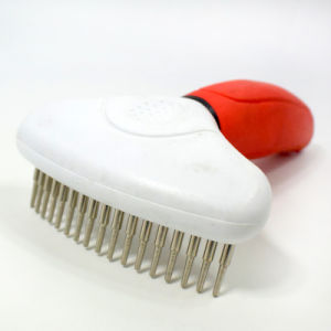 Pet Dog Cleaning Brush/Easy Clean Pet Brush pictures & photos