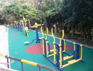 Professional Cheap Rubber/EPDM Flooring for Fitness/Exercise pictures & photos