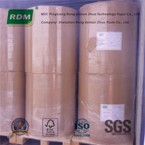 Thermal Paper/Thermopapier with or Without Bisphenol a (BPA) pictures & photos