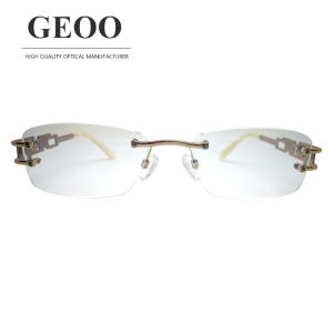 Stainless Abstract Optical Frame (XS5589 C1) pictures & photos