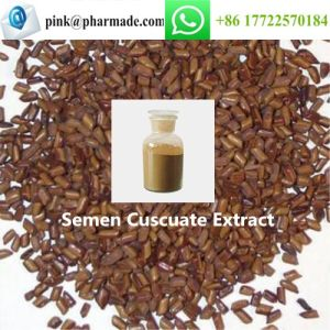 Semen Cuscuate Extract Brownish Powder Supplement pictures & photos