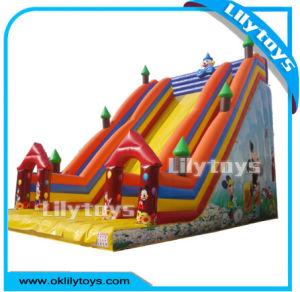 Kids Inflatable Dry Slide / Bouncer Slide for Sale