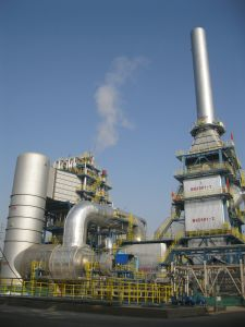 Incinerator Made in China pictures & photos