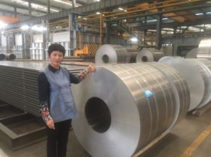 Bright Surface 6mm Thickness 6061 Cutted Small Aluminum Coil pictures & photos