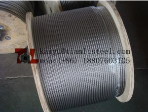 SUS304 7*7 Stainless Wire Rope pictures & photos