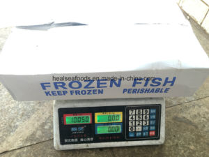 New Landing Frozen Mackerels 200-300 pictures & photos