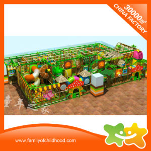 Forest Park Theme Children Commercial Indoor Playground Equipment for Sale pictures & photos