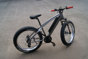 26 Inch 8fun Bafang MID Drive Motor Samsung Battery Fat Tire 48V 750W Electric Bike pictures & photos
