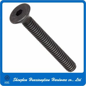 OEM Factory Made Stainless Steel Hex Socket Flat Head Nail Screw pictures & photos
