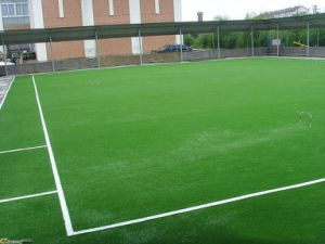 Synthetic Grass, High UV-Resistance Artificial Grass pictures & photos