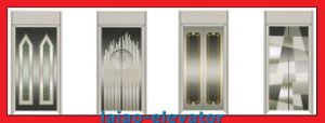 Good Quality and Low Price for Elevator Door Panel pictures & photos