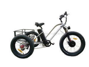 2017 Newest Aluminum 48V 500W Cargo Electric Beach City Tricycle pictures & photos
