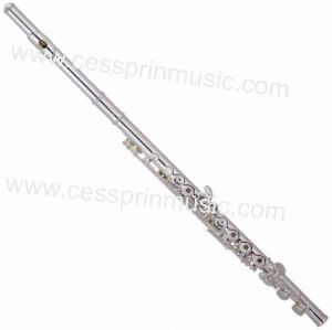 Cessprin Music / Nickel Flute / Flute Wholesales/ Flute Supplier/ (ASFL-045) pictures & photos