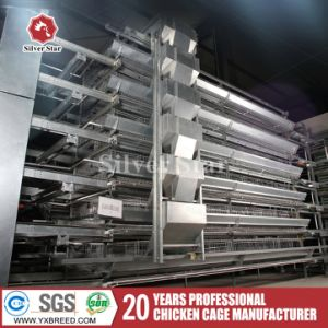 Poultry Equipment Use Hot Galvanization H Type Layer Cage pictures & photos