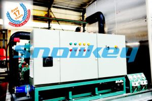 8t Plate Ice Making Machine in Malaysia pictures & photos