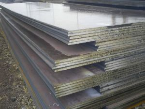 High Quality Carbon Steel Plate (ASTM 29) pictures & photos