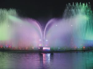 Seagull Shape LED Colorful Garden Fountain Guangzhou pictures & photos
