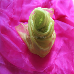 Lightweight Sheer Crystal Organza Fabric for Bridal Apparel pictures & photos
