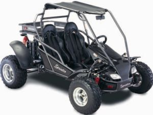 250CC Go Kart (SP250-D)