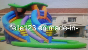 Inflatable Curve Water Slide with Pool (FL-S227)