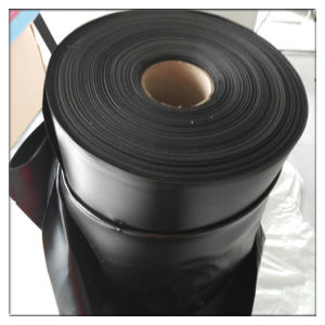Cross Linked PE Foam for The Tape pictures & photos