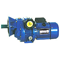 UD Series Worm Gearbox with Stepless Variator