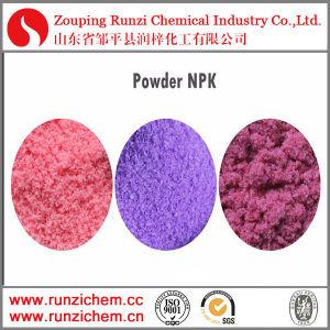 Soluble NPK Fertilizer 20-20-20 pictures & photos