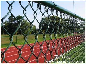 PVC Coated Chain Link Fencing pictures & photos