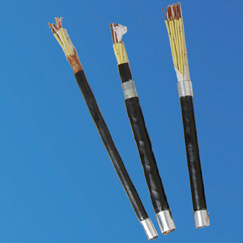 Plastic Insulted Control Cable pictures & photos