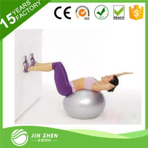 Exercise Gym Swiss Stability Ball pictures & photos