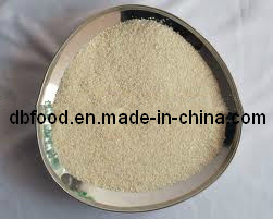 Dried Onion Granule