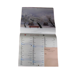 Wall Calendar Printed