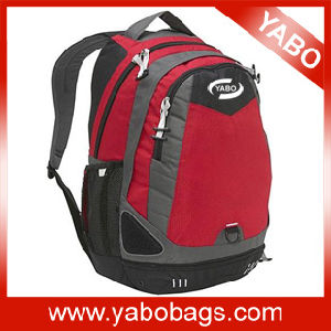 Sports Laptop Backpack, Sports Laptop Bag (LP1034)