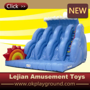 High Quality Children Playing Castle Inflatable Slide with Certificate pictures & photos