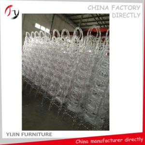 Exceptional Design Model Transparent Phoenix Furniture (RT-118) pictures & photos