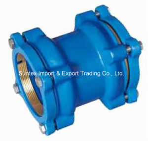 Restrained Coupling for PE/PPR, Dci Coupling with Brass Ring pictures & photos