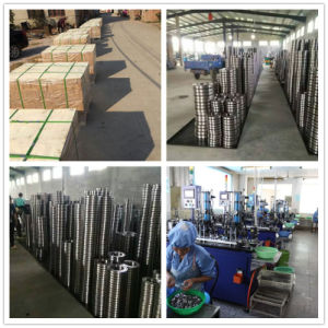 Wholesale Bearing Needle Factory Factory Price Needle Roller and Cage pictures & photos