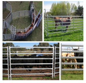 Horse Fence Panels Galvanized Cattle Fence pictures & photos