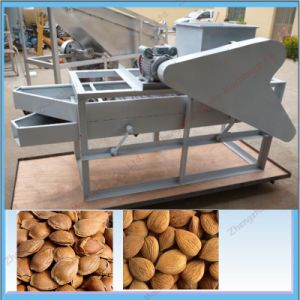 Hot Sale Wet Way Almond Peeling Machine with Factory Price pictures & photos