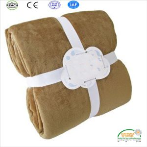 Warm Polyester Paw Embroidery Coral Fleece Pet Blanket Throw pictures & photos