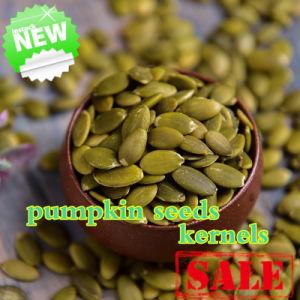 Green Chinese Shine Skin Pumpkin Seeds Kernels