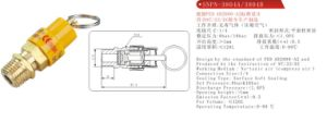 Ce Safety Valve pictures & photos