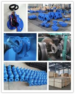 API Gate Valve for Chemical Industry Made in China pictures & photos
