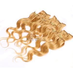 Superior Grade Brazilian Human Hair Clip in Hair Extension pictures & photos