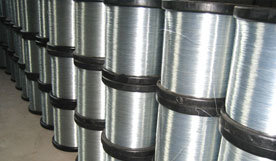 Galvanized Wire (WJ-2866)