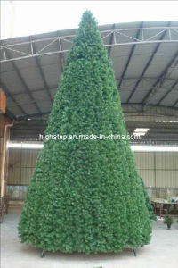 Outdoor Christmas Tree pictures & photos