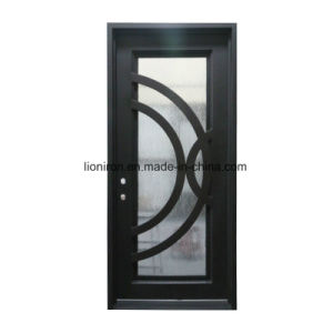 Custom Wrought Iron and Glass Security Doors pictures & photos