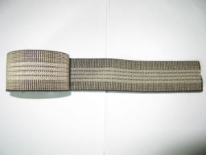Factory High Quality Garment Elastic Webbing pictures & photos
