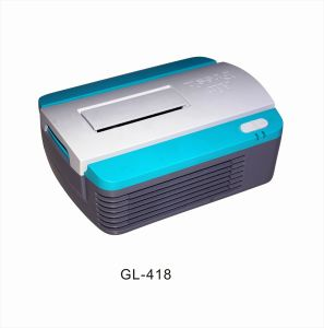 DC12 Air Purifier GL-418 pictures & photos