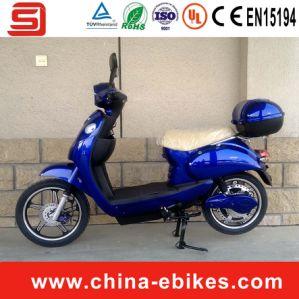 1000W High Power Electric Motorbike (JSE209)